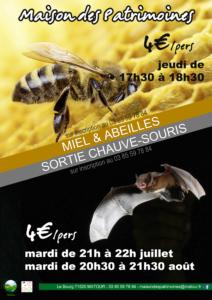 """Animusée """"Les chauve-souris"""" @ Maison des Patrimoines"""