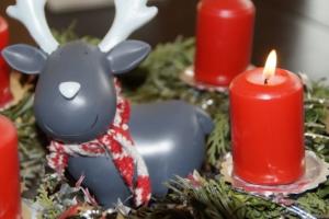 Animations et décors de Noël @ Village de Matour